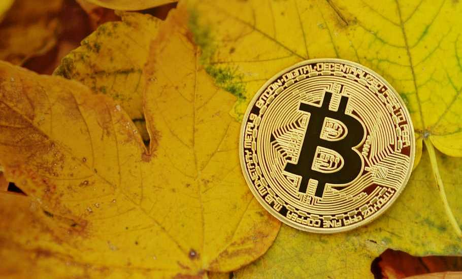 The number of addresses with an account balance of at least 1 Bitcoin has reached a new historical maximum
