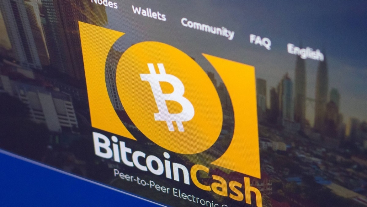 Short messages: Halving bitcoin cash and effects