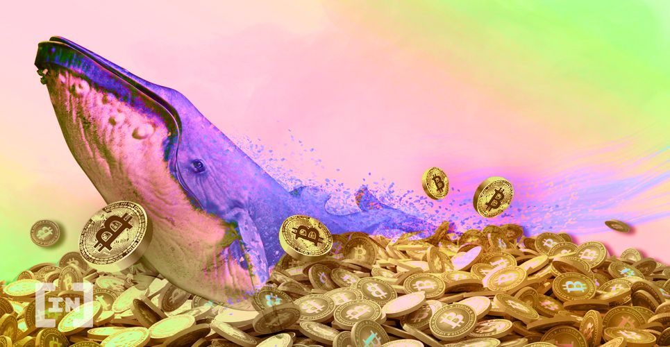 Ballena is moving $ 361 million in BTC for many different purses for $ 0.50 – BeInCrypto