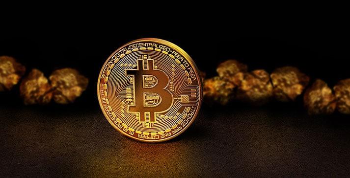 Banks vs. Cryptocurrencies – cryptocurrencies