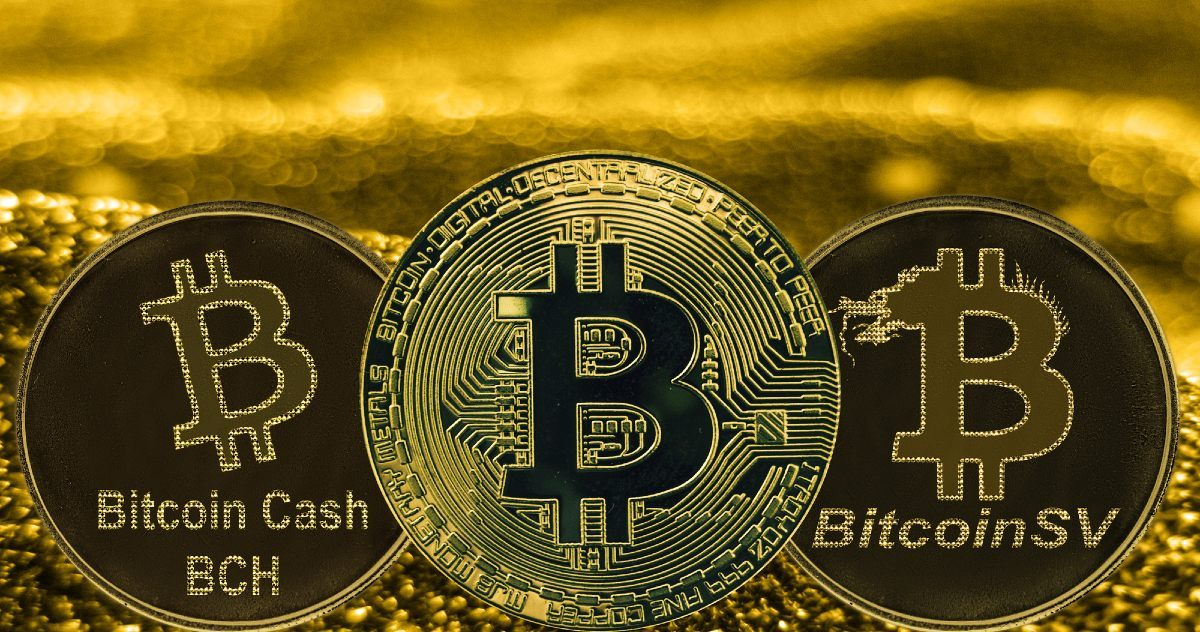Can Halving Bitcoin Affect BCH and BSV?